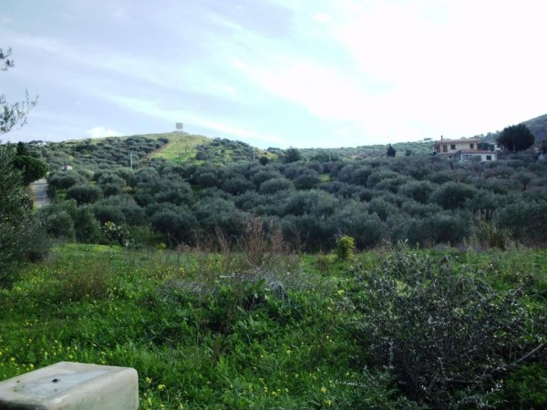 Terreno commerciale in Vendita a Bagheria Periferia: 1583 mq