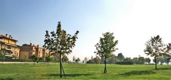 Bilocale Ozzano dell Emilia Via Ettore Nardi, 10 4