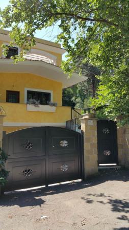roma vendita quart: lunghezza (zona della viii mun.) gruppo erbori costruzioni