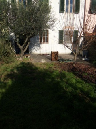 Bilocale Capannori Via Del Chiassetto 1