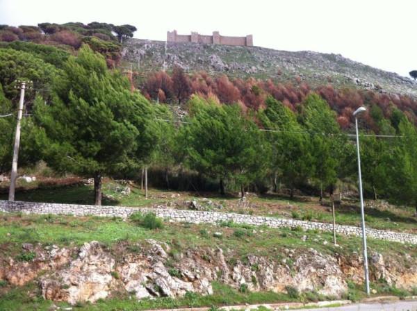 Terreno Agricolo in vendita a Monreale, 9999 locali, prezzo € 60.000 | Cambio Casa.it