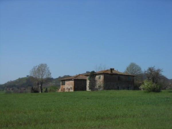 Rustico in Vendita a Sasso Marconi Periferia: 5 locali, 1300 mq