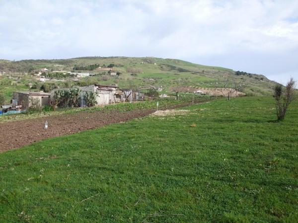 Terreno commerciale in Vendita a Alia Periferia: 3400 mq