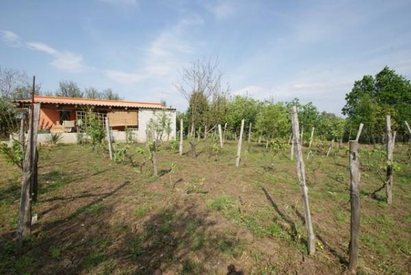 Soluzione Indipendente in vendita a Briatico, 2 locali, prezzo € 90.000 | Cambio Casa.it