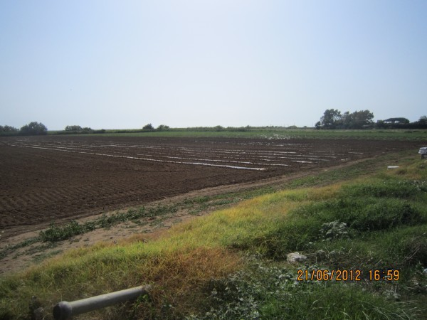 Terreno Agricolo in vendita a Tarquinia, 9999 locali, prezzo € 200.000 | Cambio Casa.it
