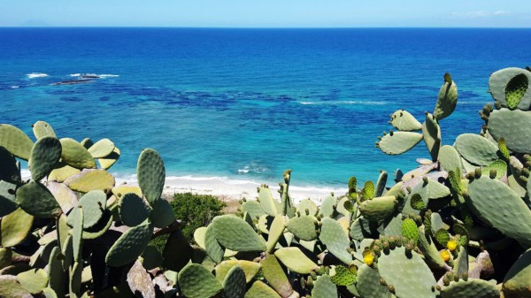 A 2 km dal centro di Tropea e a 1 km dal centro di Santa Domenica vendiamo: Rif.8450647
