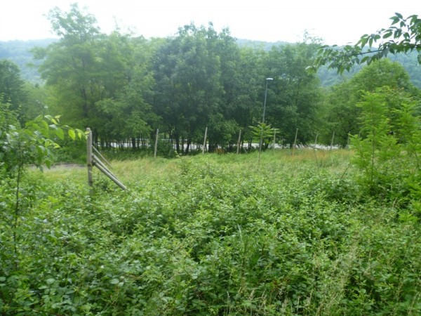 Terreno residenziale in Vendita a Strambinello Periferia: 1800 mq