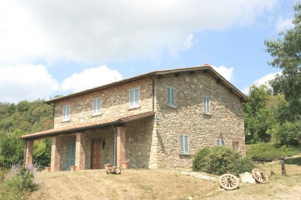 Rustico in Vendita a Arezzo Periferia Nord: 5 locali, 300 mq