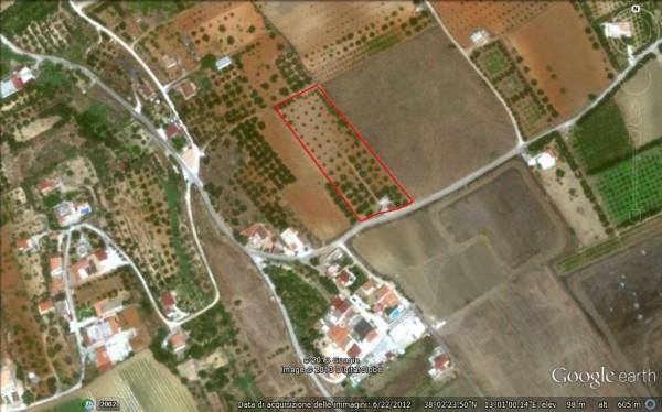 Terreno Agricolo in vendita a Partinico, 9999 locali, prezzo € 70.000 | Cambio Casa.it