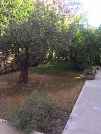 Bilocale Pescara Viale Primo Vere 10