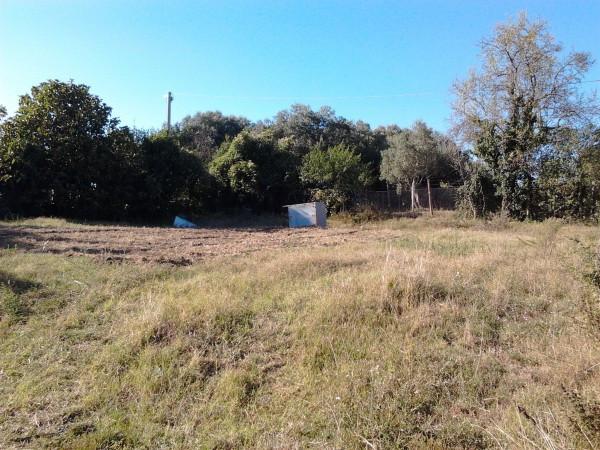 Terreno Agricolo in vendita a Monte Romano, 9999 locali, prezzo € 35.000 | Cambio Casa.it