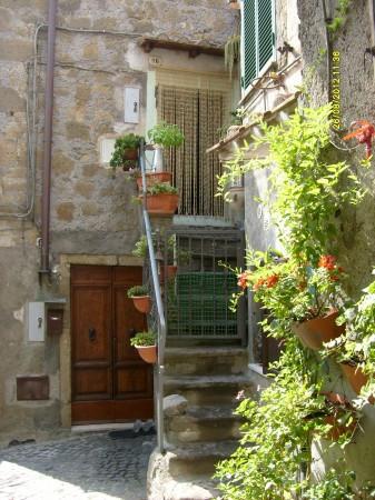 Bilocale Farnese Via Gio Batta Passeri 10