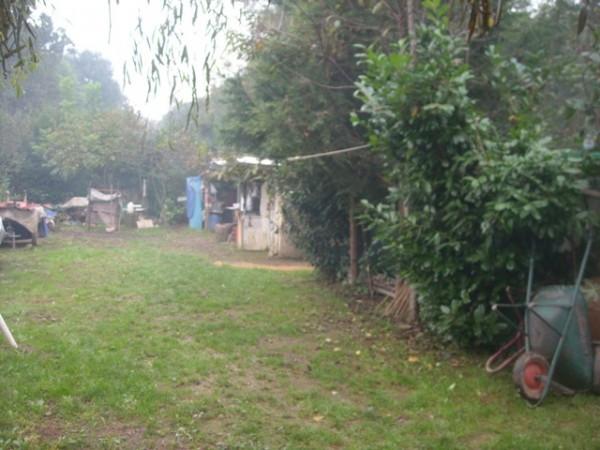 Terreno agricolo in Vendita a Vallo Torinese Rif.8686540