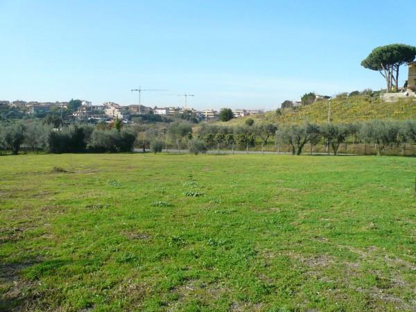 Bilocale Frascati Via Della Mola Cavona 8