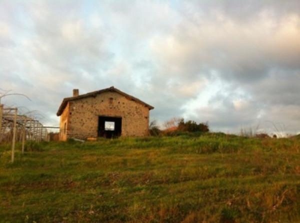 Rustico-casale Altro in Vendita a Velletri