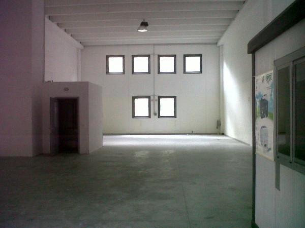Capannone in Affitto a Genova Semicentro Nord: 1 locali, 230 mq