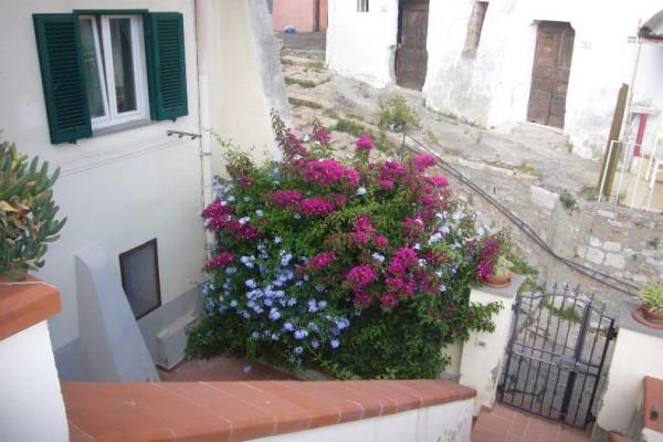 Bilocale Rosignano Marittimo Via Del Castello 7