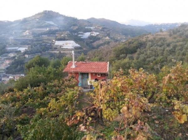 Rustico / Casale in vendita a San Biagio della Cima, 2 locali, prezzo € 85.000 | Cambio Casa.it