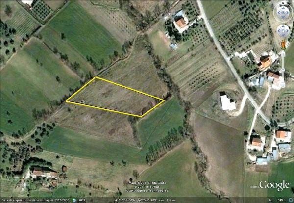 Terreno Agricolo in vendita a Ruviano, 9999 locali, prezzo € 20.000 | Cambio Casa.it