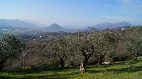 Terreno Agricolo in vendita a Caiazzo, 9999 locali, prezzo € 110.000 | Cambio Casa.it
