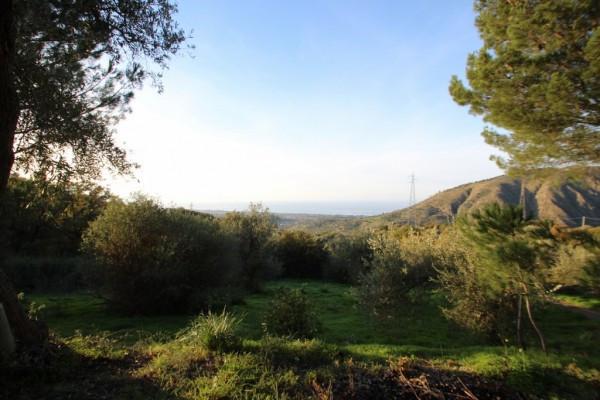 Terreno commerciale in Vendita a Lascari Periferia: 5700 mq