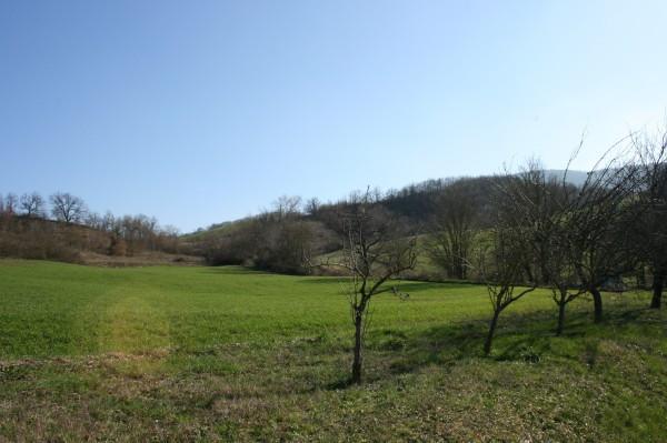 Terreno residenziale in Vendita a Lugagnano Val D'Arda Centro: 1350 mq
