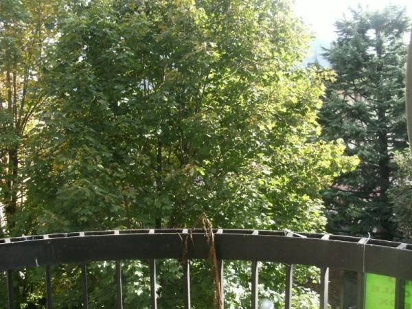 Appartamento in vendita a Albino, 3 locali, prezzo € 99.000   Cambio Casa.it
