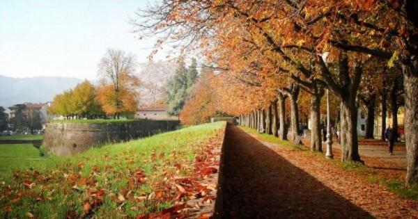 Bilocale Lucca Viale San Gemignano 10