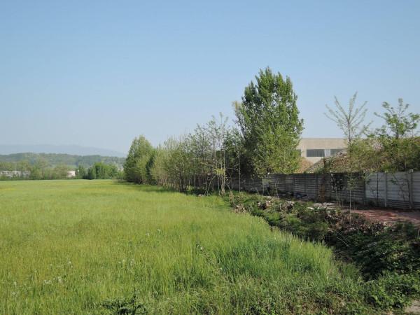 Terreno Edificabile Artigianale in vendita a Bedizzole, 9999 locali, prezzo € 980.000   Cambio Casa.it