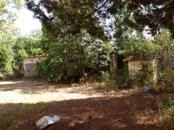 Terreno Edificabile Residenziale in vendita a Latina, 9999 locali, prezzo € 250.000 | Cambio Casa.it