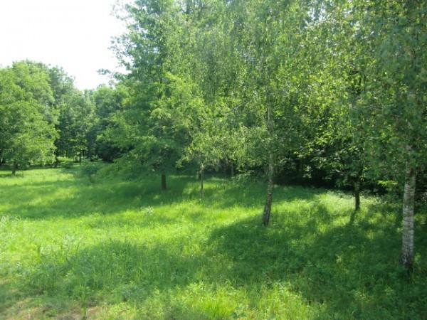 Terreno Agricolo in vendita a Erba, 9999 locali, prezzo € 55.000 | Cambio Casa.it