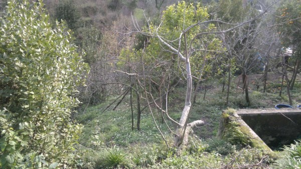 Bilocale Cava de Tirreni Via Nicola Salsano 6