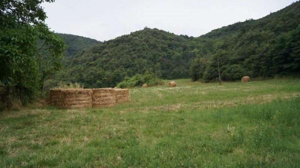 Terreno Agricolo in vendita a Baia e Latina, 9999 locali, prezzo € 99.000 | CambioCasa.it