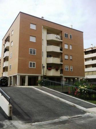 Appartamento affitto ROMA (RM) - 1 LOCALI - 37 MQ