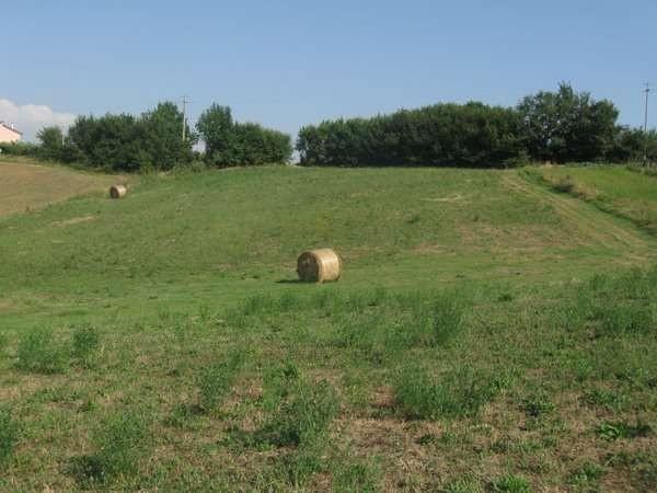 Terreno Agricolo in vendita a Alvignano, 9999 locali, prezzo € 28.000 | Cambio Casa.it
