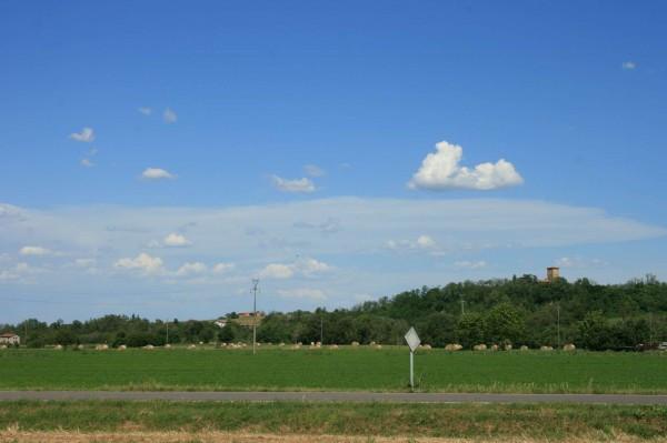 Terreno residenziale in Vendita a Carpaneto Piacentino: 4000 mq