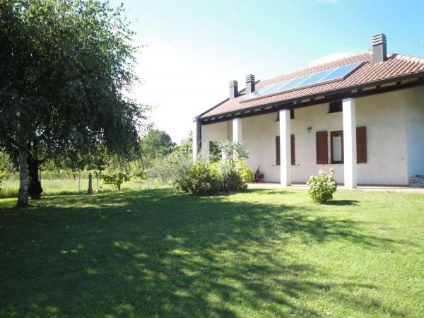 Villa in Vendita a Borgomanero Semicentro: 5 locali, 500 mq