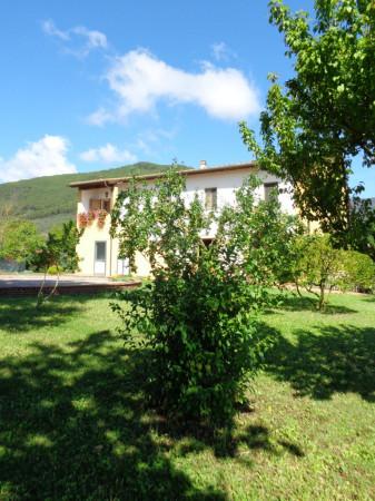 Rustico / Casale in vendita a Vicopisano, 6 locali, prezzo € 850.000 | CambioCasa.it