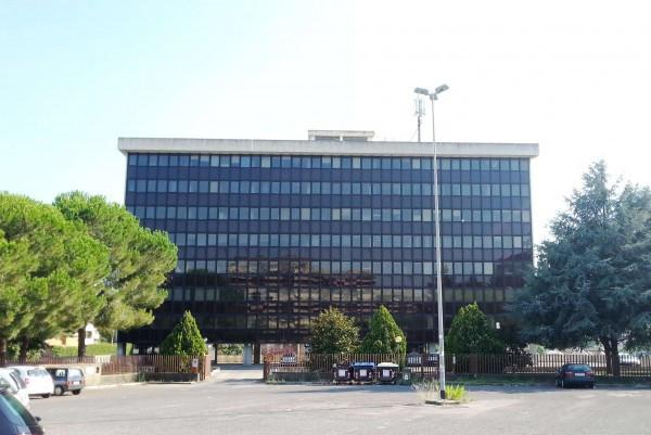 Ufficio-studio in Affitto a Roma 23 Eur / Torrino: 500 mq