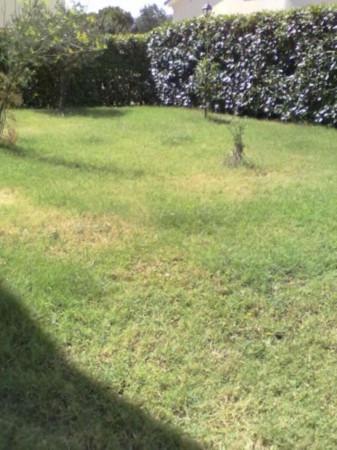 Terreno residenziale in Vendita a Morciano Di Romagna Periferia: 160 mq  - Foto 1