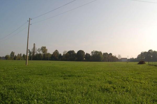 Terreno Agricolo in vendita a Carmignano di Brenta, 9999 locali, prezzo € 140.000 | Cambio Casa.it