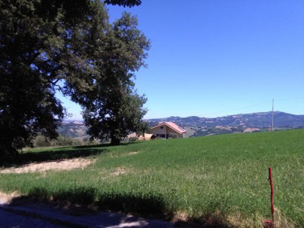 Terreno Agricolo in vendita a Colledara, 9999 locali, prezzo € 26.500 | CambioCasa.it