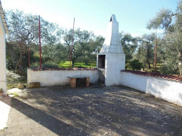 Bilocale Sannicandro di Bari  5