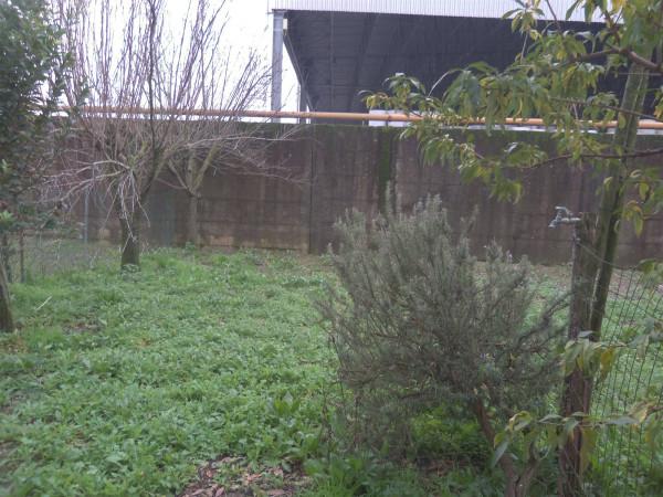 Bilocale Porcari Via Martellacci 8