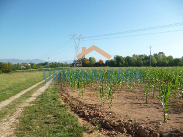 Terreno Agricolo in vendita a Bedizzole, 9999 locali, prezzo € 70.000 | CambioCasa.it