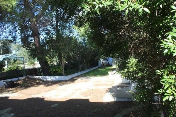 Bilocale San Vito dei Normanni Strada Statale 605 4
