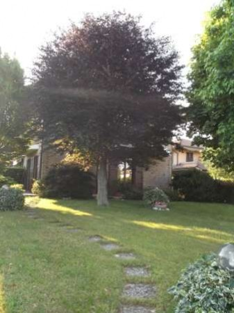 Villa in vendita a Mariano Comense, 5 locali, prezzo € 359.000 | CambioCasa.it