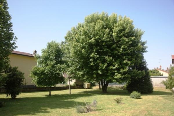 Bilocale Motta Visconti Via San Giovanni 3