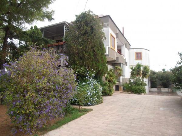 Loft / Openspace in Affitto a Bari