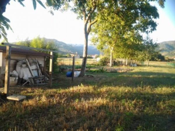 Vendita Terreno agricolo Sansepolcro Rif.1473188
